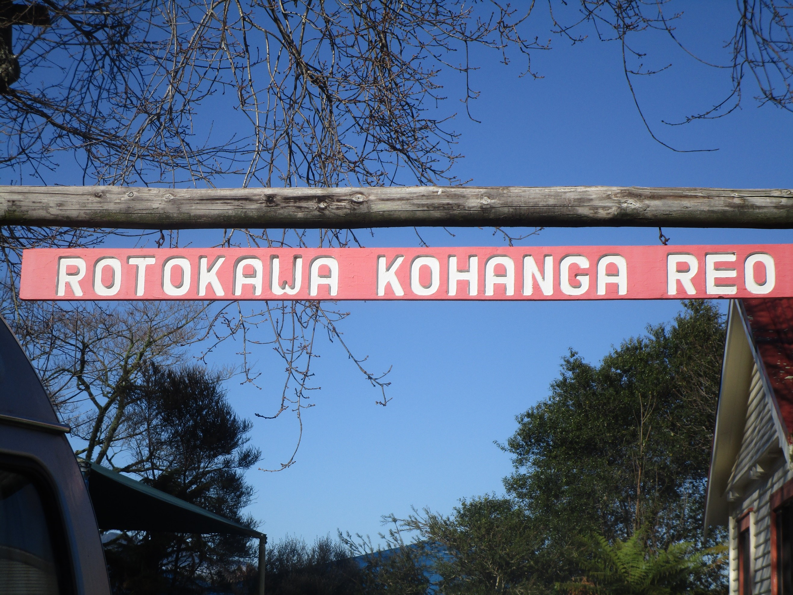 an introduction to the history of maori once a dying language A prominent feature of maori culture are the striking learning is conducted substantially in the maori language the maori people of today - maori history.